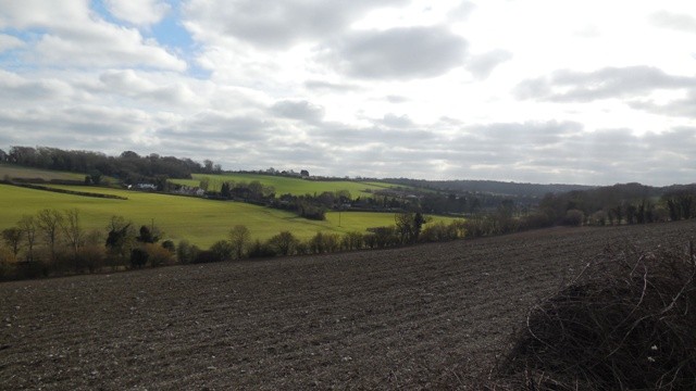 Hartley Bottom looking towards Goldsmiths from Grange Lane, showing fields formerly part of the farm, February 2015