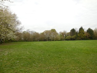 Council parkland from Billings Hill Shaw woodland, April 2014