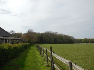 Chapelwood, from footpath leading to Black Lion, April 2014