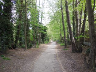 Hartley Wood at Gorsewood Road entrance in 2006