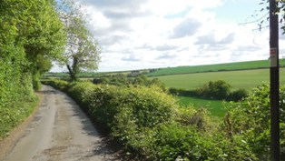 Hartley-Kent: Grange Lane, beside Foxborough Wood