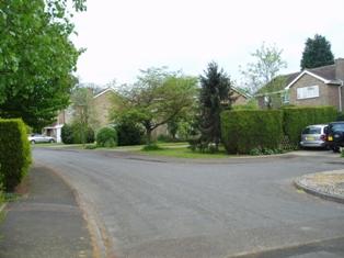 Hartley-Kent: Billings Hill Shaw